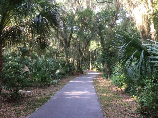 Hilton Head Island Bike Trails Sea Pines Going Toward South Beach