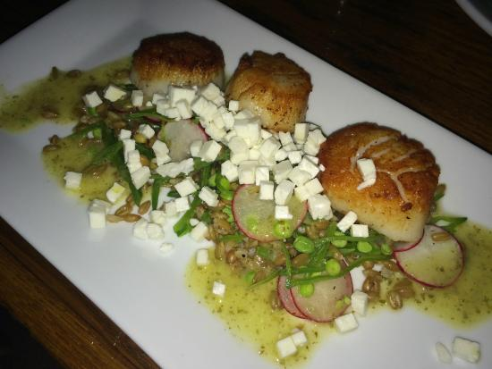 The Tailor and The Cook : Pan Seared Scallops