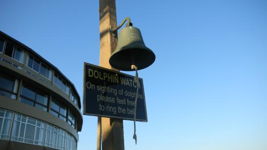 Salt Rock Hotel & Beach Resort: IT IS THE DOLPHIN COAST! Ring the bell when you see a dolphin!