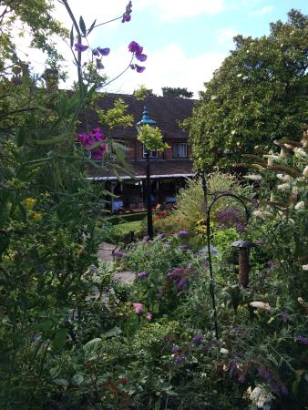 Monty's Inn: Monty's vista from the garden