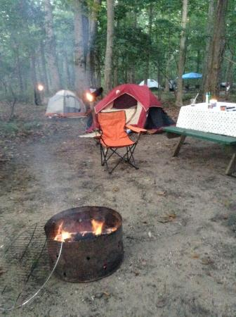 Eastern Long Island Kampground: Campsite