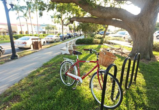 Venice is home to more than 930 bike trails.