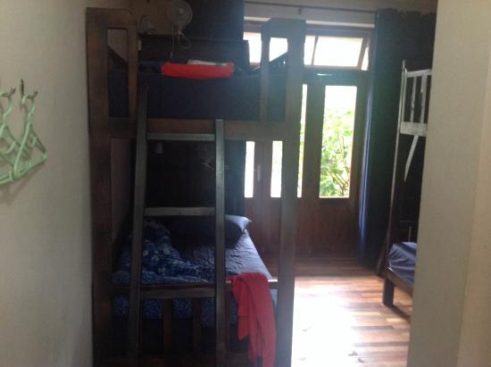 SleepyFish Lodge: The dorm