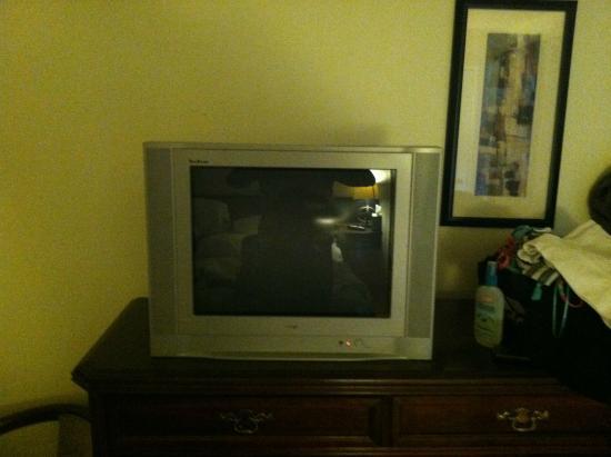 Tahoe Vistana Inn: not your typical flat screen!!!