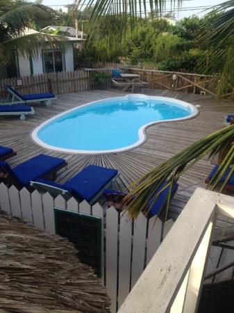 Pedro's Inn Backpacker Hostel: Hostel Pool