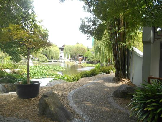 Chinese Garden Landscape Winding path in the chinese garden sydney picture of chinese chinese garden of friendship winding path in the chinese garden sydney workwithnaturefo