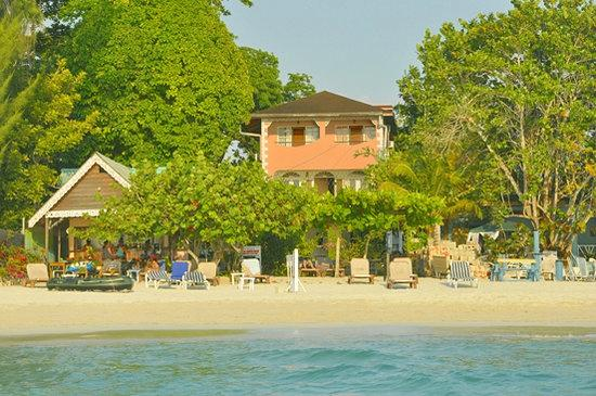Beach View Picture Of Firefly Beach Cottages Negril