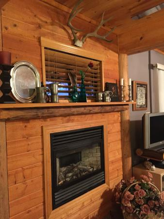 Coulterville, CA: Fireplace in John Muir Jr Suite