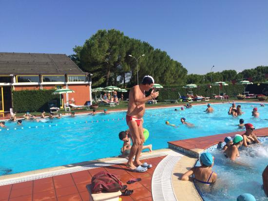 Lettini in piscina insufficienti ed a pagamento 2 euro foto di jesi marche tripadvisor - Lettini piscina ...