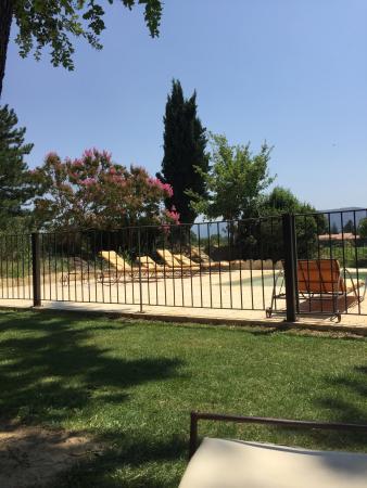 Sous L'olivier: photo0.jpg