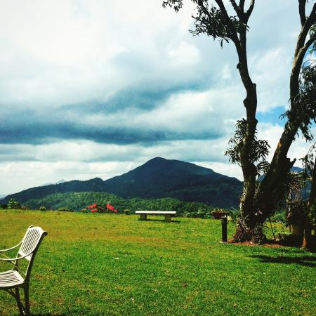 Ancoombra Tea Estate Bungalow: Amazing views and setting