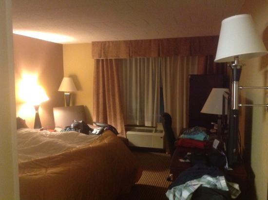 Clarion Hotel: King bed room