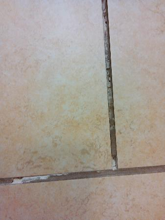 Hampton Inn and Suites - Durant: Grout crumbling.