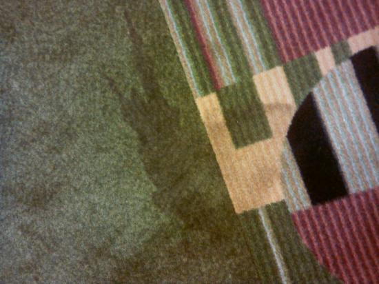 Hampton Inn and Suites - Durant: Stained carpet.