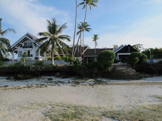 Dive Thru Scuba Resort - Bohol: view from the beack towards the resort