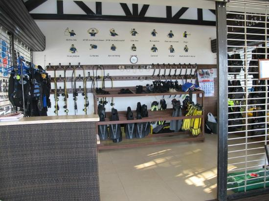 Dive Thru Scuba Resort - Bohol: dive shop