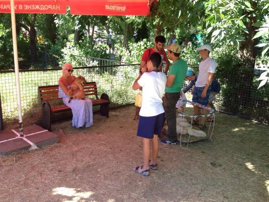 Bilohirsk: Парк львов «Тайган»