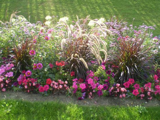 Jardin des plantes paris france picture of jardin des for Plante 1 euro paris