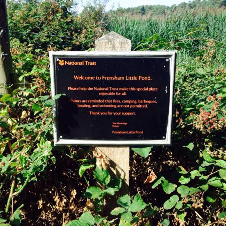 Frensham Little Pond: All of the rules...