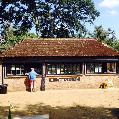 Frensham Little Pond: Tern Cafe