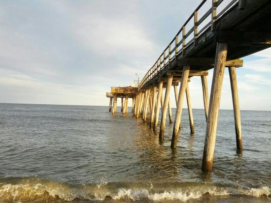 My son fishing at ventnor city pier picture of ventnor for Nj shore fishing report
