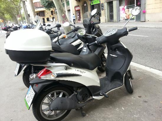 Urban Rent Scooter