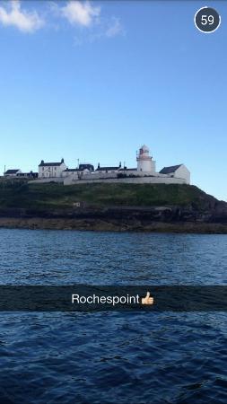Cork Sea Safari Photo