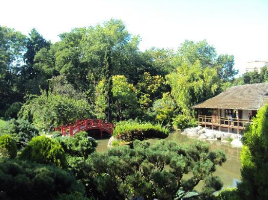 Jardin japonais picture of jardin japonais toulouse for Le jardin japonais toulouse