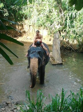 Unawatuna, Sri Lanka: Elephant riding in Kandy
