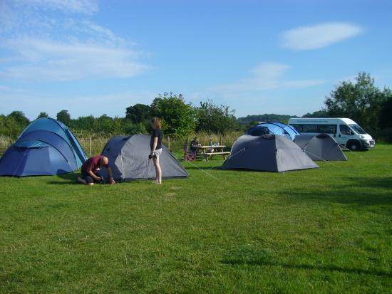 Tresseck Campsite: campsite