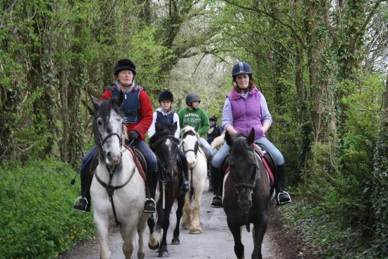 Ballyjennings Stables - Day Activities