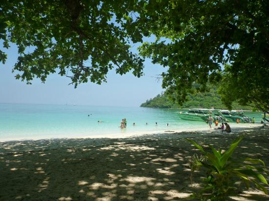 View Of The Sea - Photo de Koh Rok Island, Ko Lanta - TripAdvisor