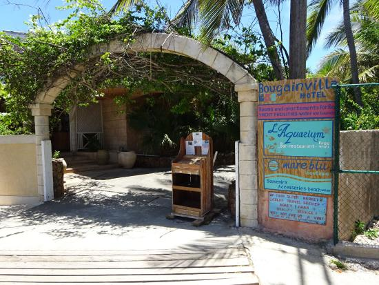 Bougainvilla : Nice spot to stop for a refreshing drink. The food menu looked interesting to. Tables nicely mad