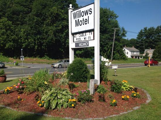 Willows Motel: Love the place