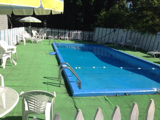 Willows Motel: Awesome pool