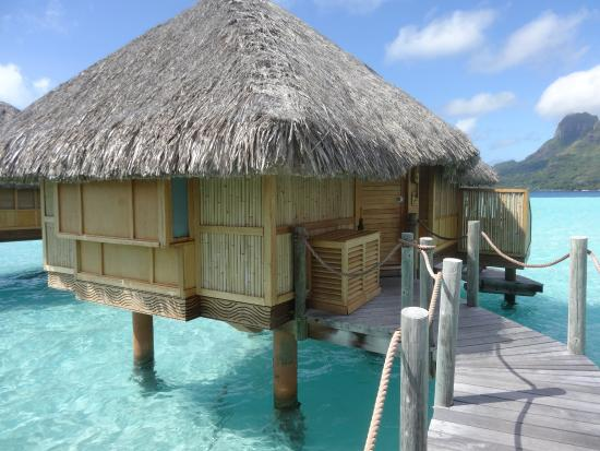 maison sur pilotis picture of bora bora pearl beach resort spa bora bora tripadvisor. Black Bedroom Furniture Sets. Home Design Ideas