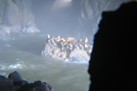 Florence, Oregón: View inside the cave