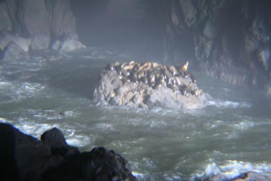 Florence, Oregón: Inside the cave