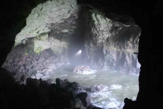 Florence, OR: Inside the cave