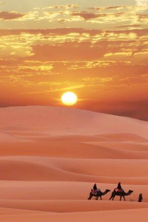 Rutas con Encanto Day Tours : Desert 1
