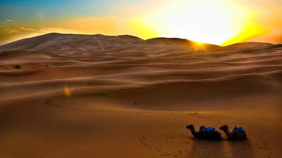 Rutas con Encanto Day Tours : Desert sunset