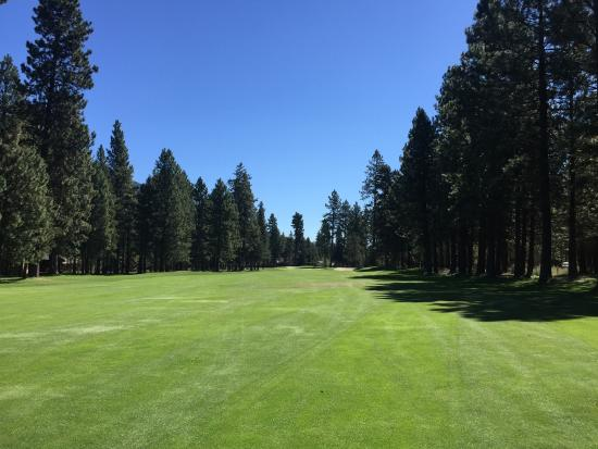 Black Butte Ranch Golf Club: Amazing views from the Big Meadow course.