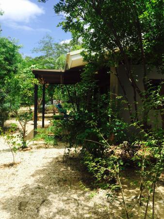 Las Avellanas Villas: photo2.jpg