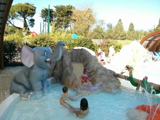 La Grainetiere Camping : Toddler pool