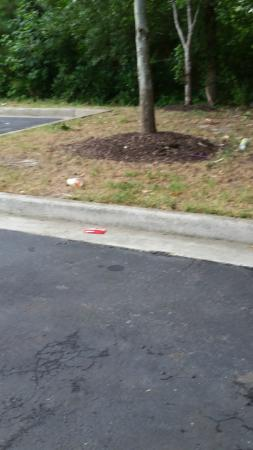 Holiday Inn Express Chesapeake: Trash on grounds