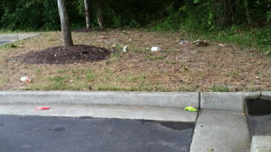 Holiday Inn Express Chesapeake: Trash on grounds