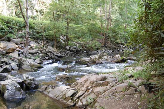 Creek Ridge Camping: Spring Creek