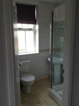 Mizen Head Hotel: Mini-suite bathroom