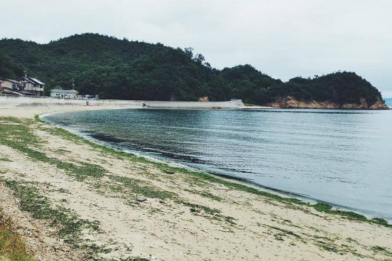 the ferry at Takamatsu port - Picture of Naoshima, Naoshima-cho - TripAdvisor