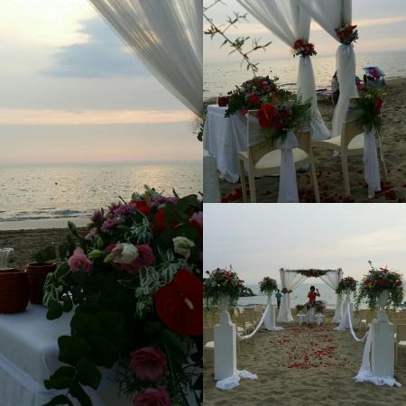 Matrimonio Spiaggia Anzio : Matrimonio sulla spiaggia stupendooo foto di saint